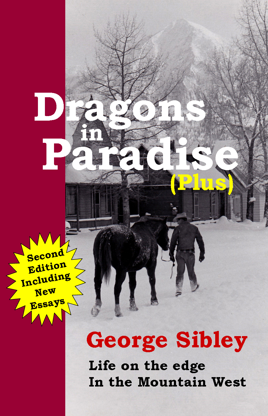 Cover - Dragons in Paradise 2